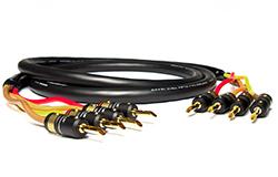 MOGAMI (モガミ) 3104 w/VIABLUE PLUG Bi-Amping